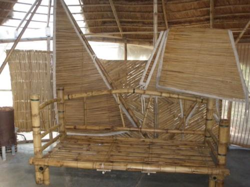 Bambus Farm 16
