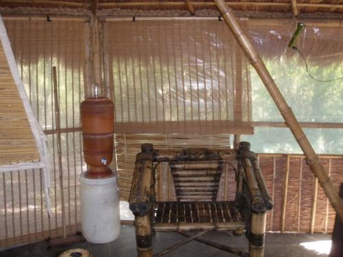 Bambus Farm 21
