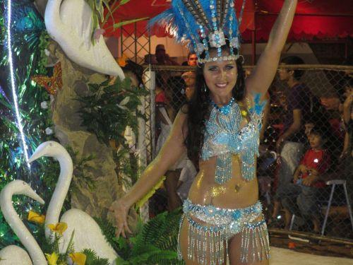 34 Karneval 2013 - 37