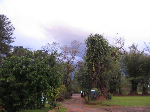 Regen 02
